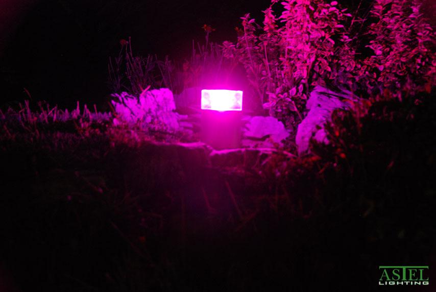 12 volt led pathway lights